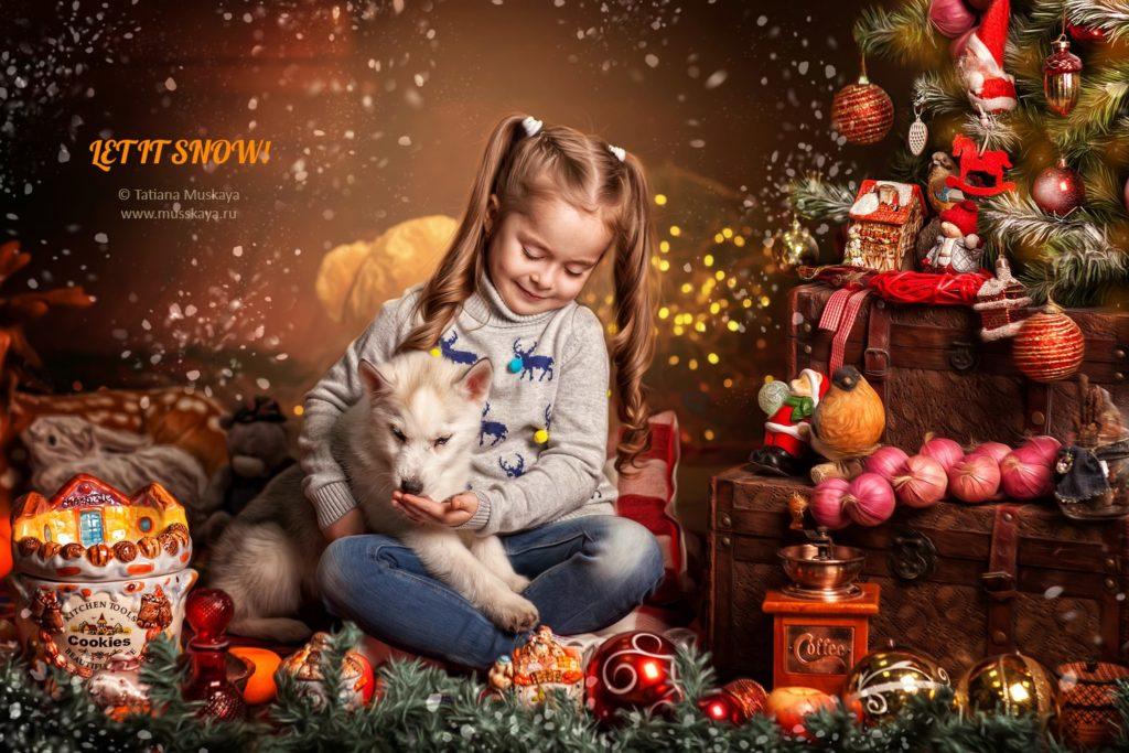 новогодняя фотосессия с хаски в москве