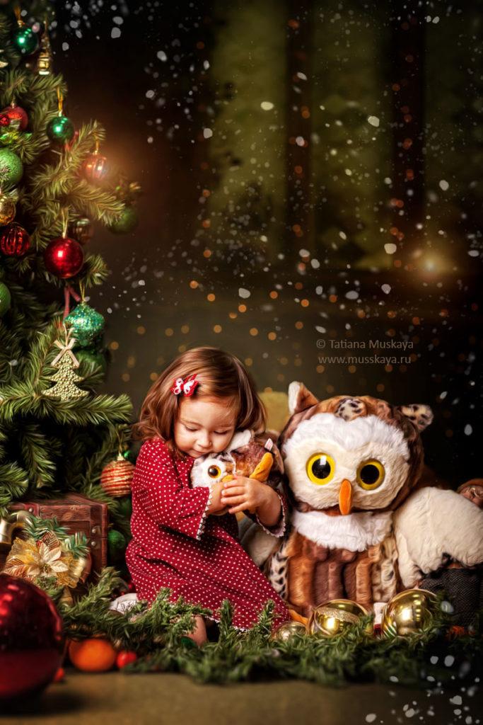 Новогодняя фотосессия Сказочный домик