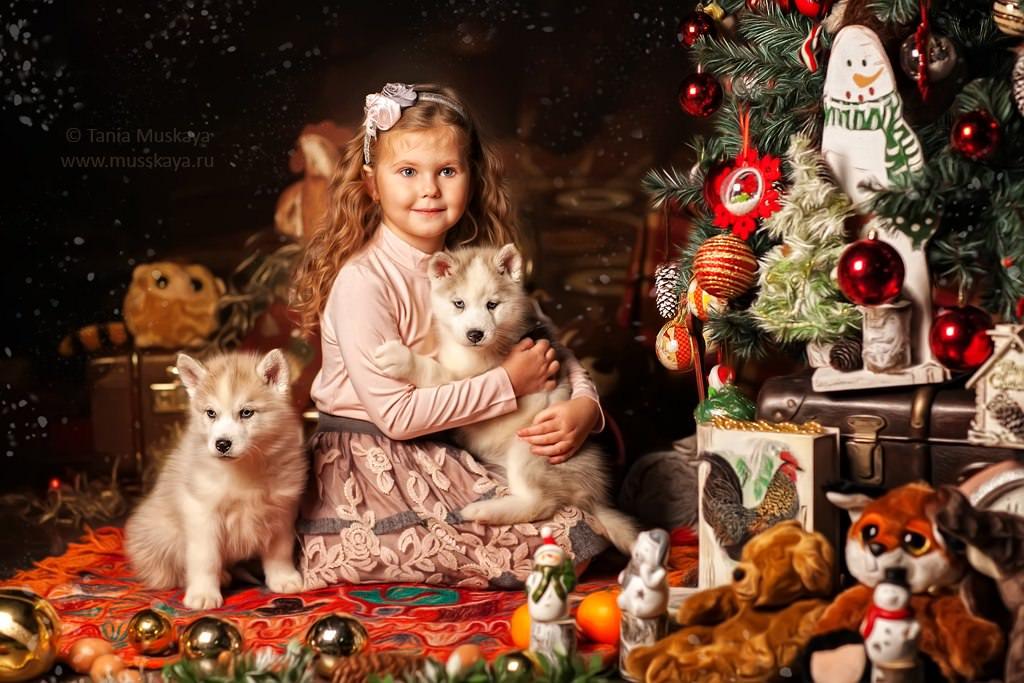 Новогодняя фотосессия с мишками